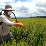 Lowering Risk When Using Pesticides