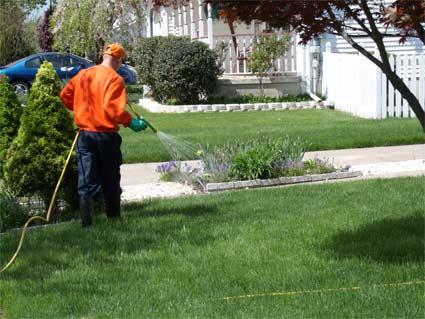 Is Perimeter Pest Control Worth It?
