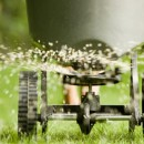 Granular vs. Liquid lawn fertilizer: what's the difference?