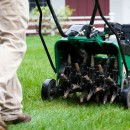 Core lawn aeration and why it is crucial to lawn care