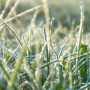 Your Lawn Care Checklist For The End Of Winter