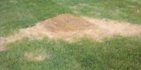 Dry Foundation Underneath
