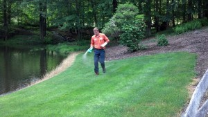 When and how to fertilize your lawn