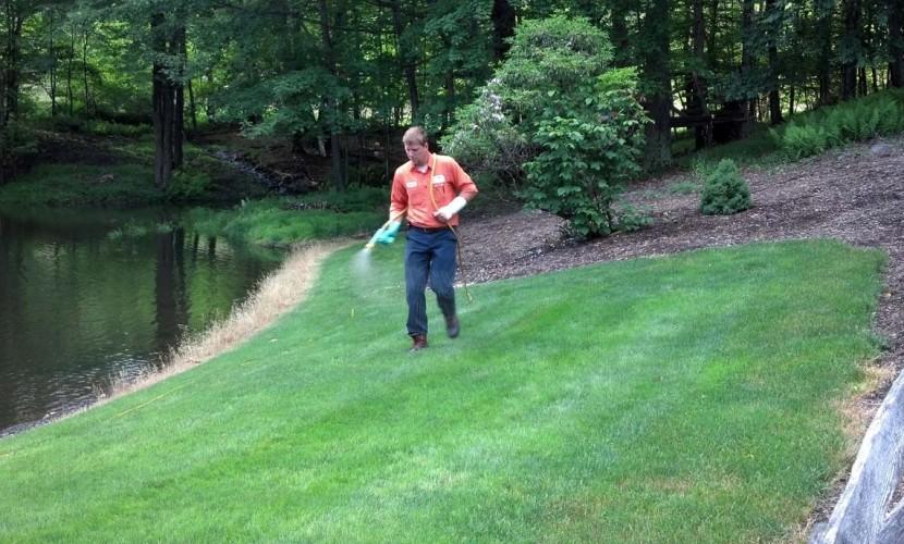 lawn care scranton pa