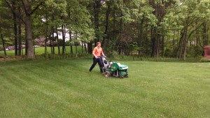 Clarks Summit Lawn Care