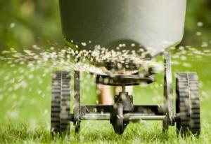 Granular vs. Liquid lawn fertilizer: what's the difference?