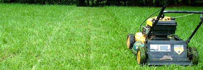 lawn care nepa