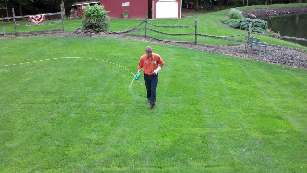 Lackawanna County Lawn Care