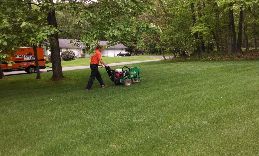 http://www.pahomepage.com/lifestyle/pa-live/pa-live-it-is-time-to-cut-the-grass-grasshopper-lawns