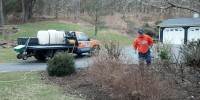 Louis Mulch Bed Weed Control