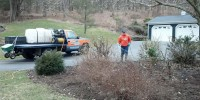 Louis Mulch Bed Weed Control 3