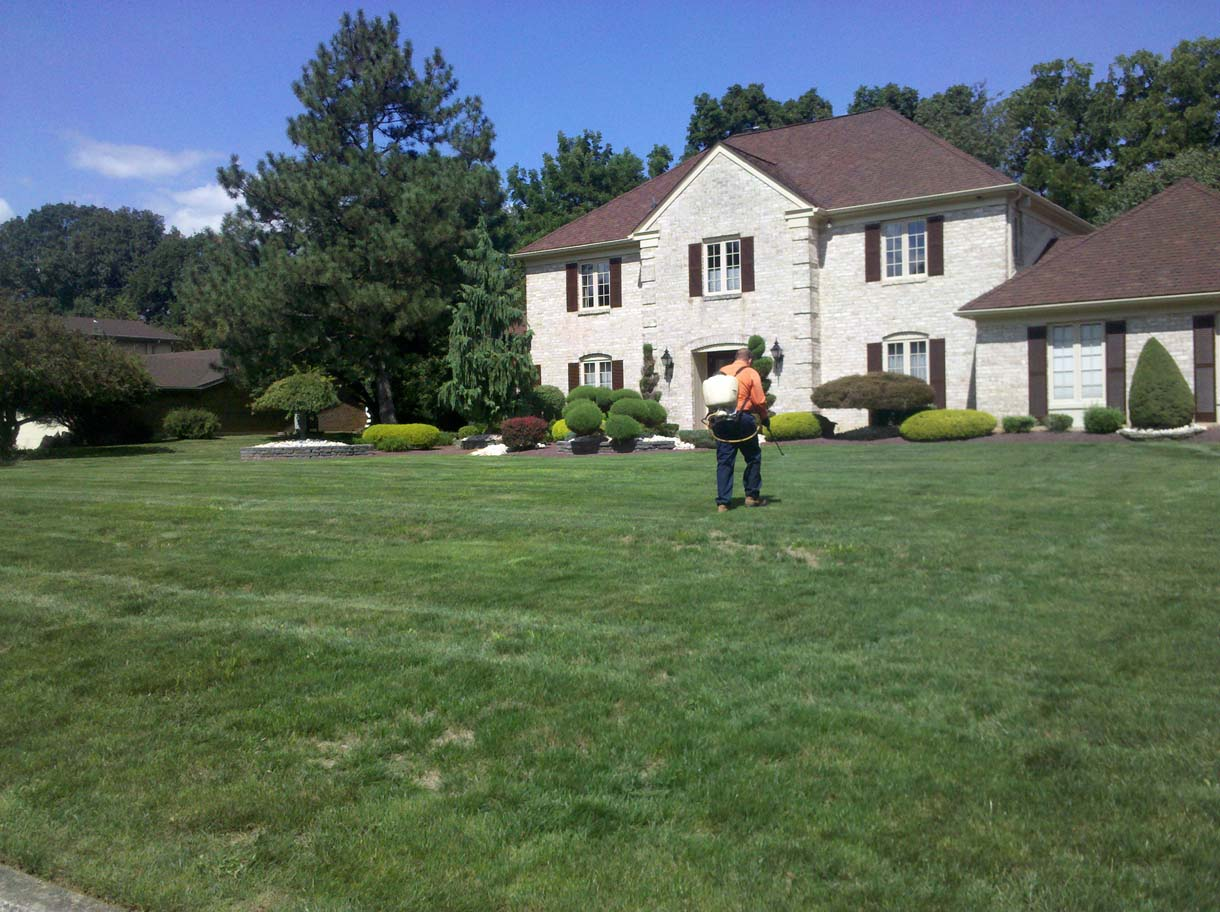 Old Forge Lawn Care