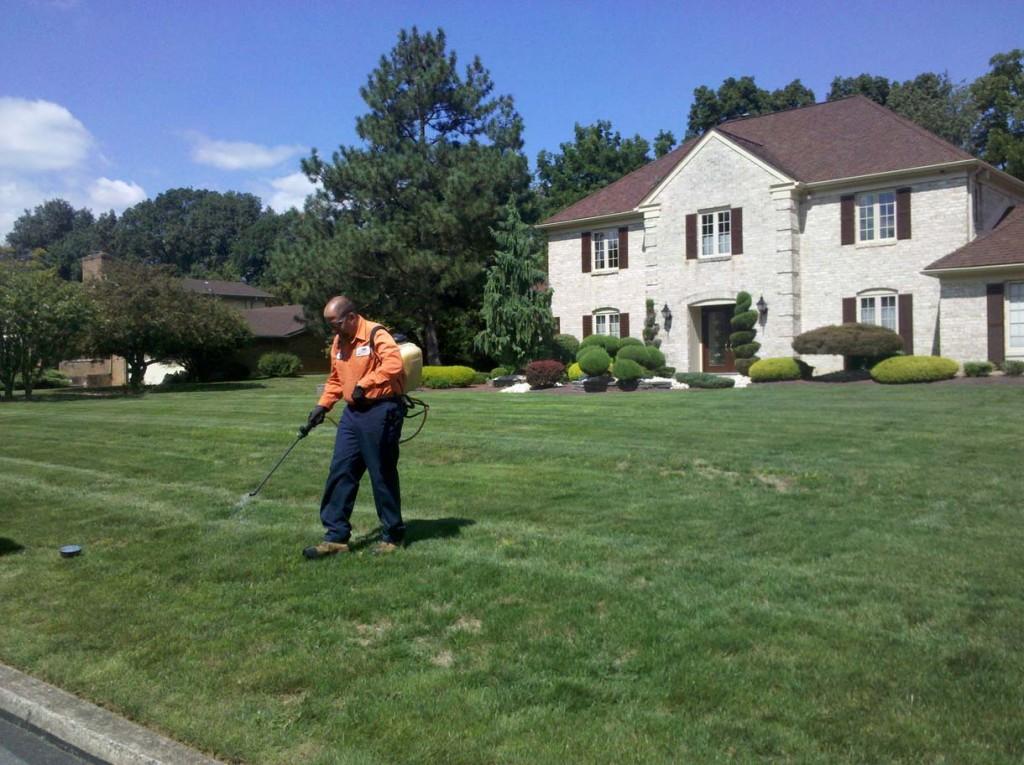 NanticokePennsylvania Lawn CareService