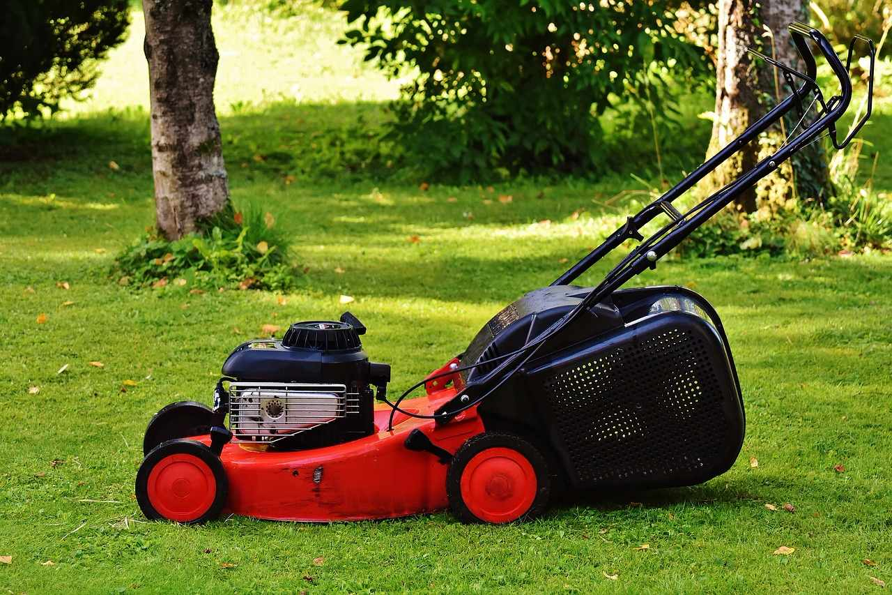 4 Reasons why it is Vital to Mow your Lawn at a Minimum of 3""