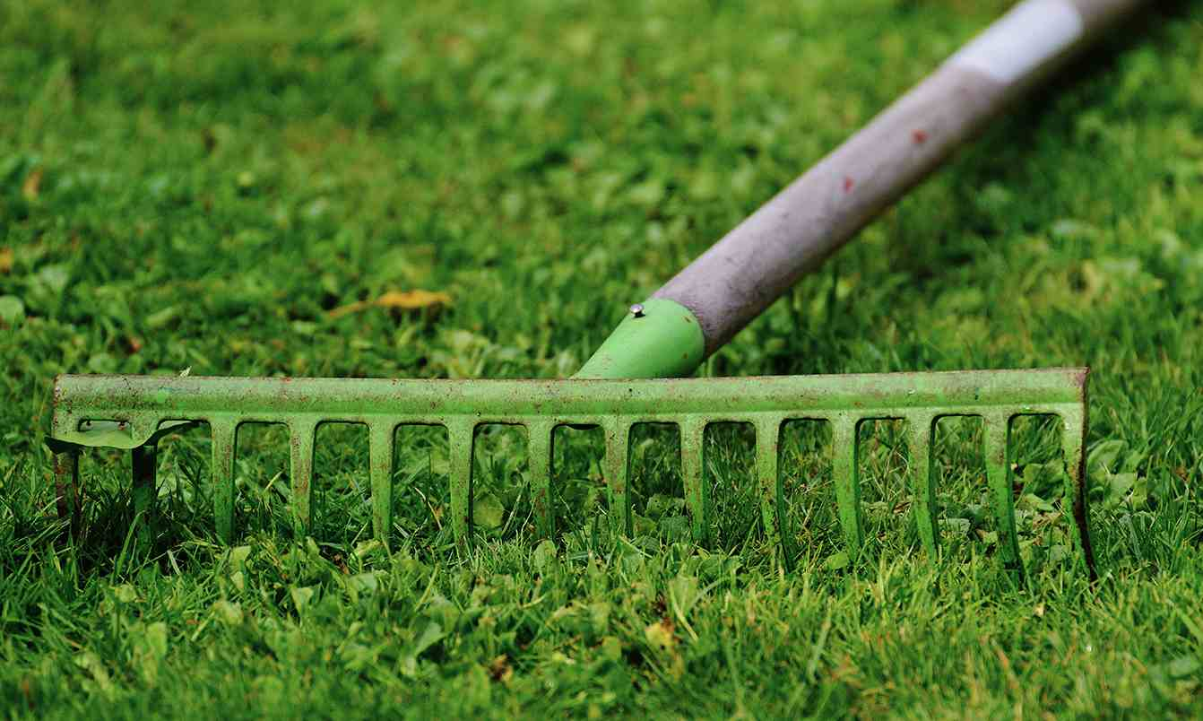 Lawn Maintenance – Lawn Care Tips