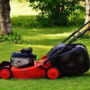 Fall Lawn Care and Maintenance For a Great Looking Lawn Next Year