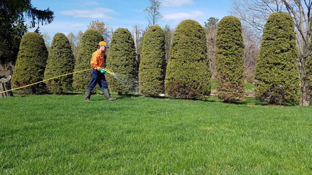 DunmorePennsylvania Lawn CareService