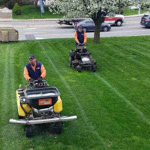 Northampton County Lawn Care
