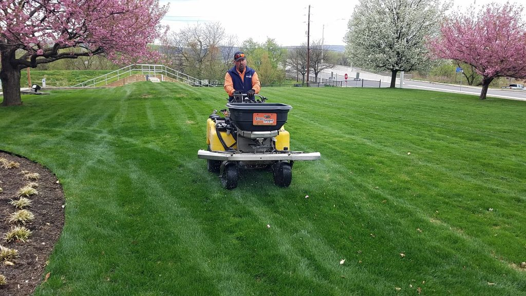 Peckville Pennsylvania Lawn Care Service