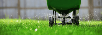 Grasshopper Lawns | Lawn Care Services