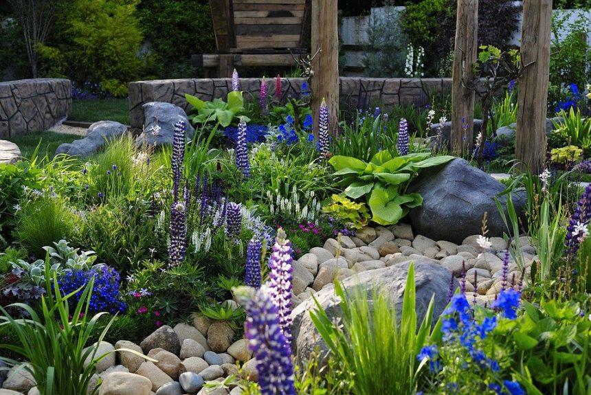 Garden Services and Garden Soil