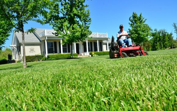 Why Use a Commercial Lawnmower at Home?
